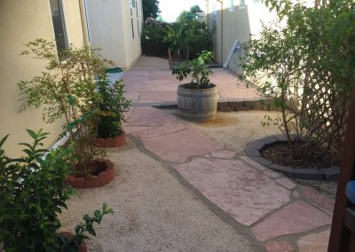 Flagstone patio waterwise plants 2
