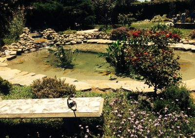 pond after 13